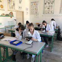 IT akadémia – biológia (3/14)