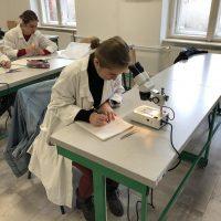 IT akadémia – biológia (12/14)