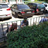 Maľovanie plotu pred budovou školy (5/9)