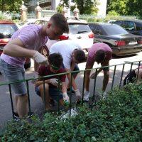 Maľovanie plotu pred budovou školy (6/9)