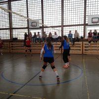 Volejbalový turnaj pri príležitosti Dňa študentstva (1/10)