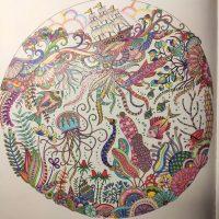 2.D v čase koronavírusu – 3. diel (4/16)
