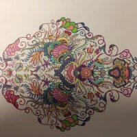 2.D v čase koronavírusu – 3. diel (5/16)