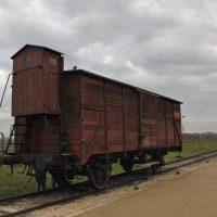 Dejepisná exkurzia Osvienčim, Krakov a Wieliczka (18/25)