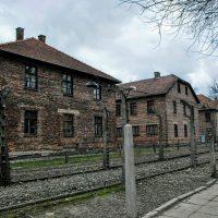 Dejepisná exkurzia Osvienčim, Krakov a Wieliczka (19/25)