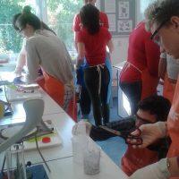 Experimentálne laboratórne cvičenia na TUKE (11/18)