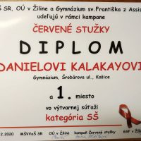 """Vyhodnotenie súťaže """"Logo pre Červené stužky"""" 2020 (5/5)"""